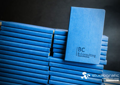 B-Consulting_01 studiografic